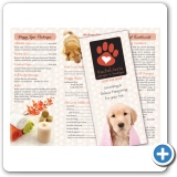Dog Spa Brochure